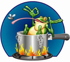 boilingfrog