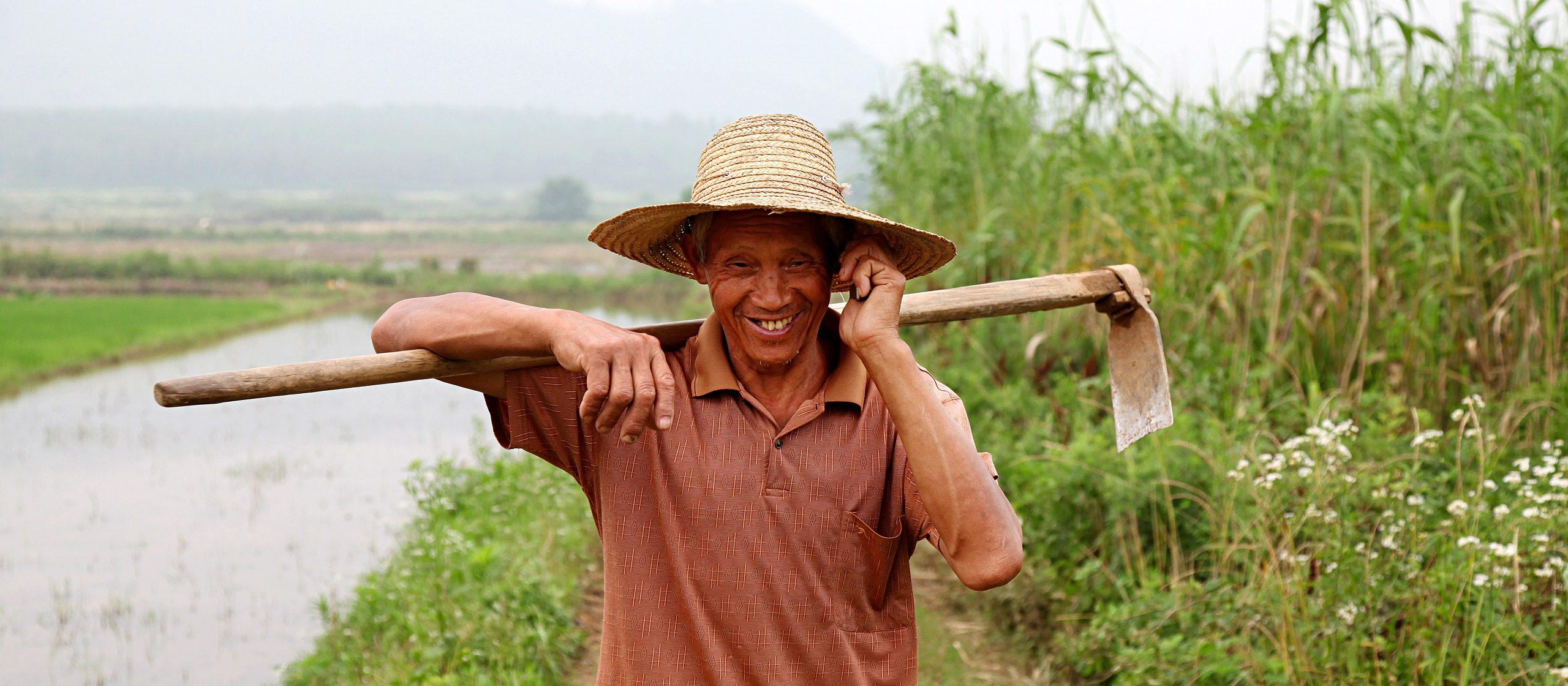 De Chinese boer